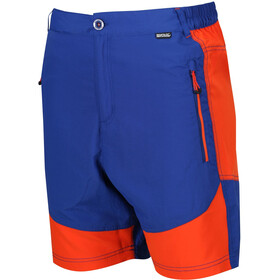 Regatta Sungari Shorts Men Surf Spray/Blaze Orange